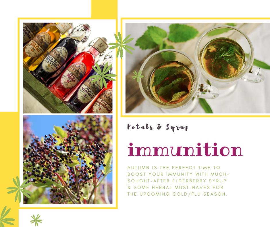 immunition-desc
